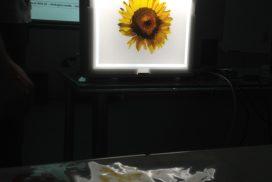 svetelna-reklama